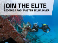 PADI Master Diver courses and certification in Eilat