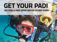 PADI Diving courses and Accommodation