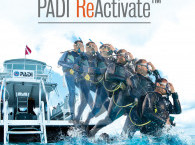 Refresh/Check Dive for Certified suba divers