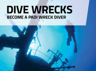PADI Wreck Diver Course in Eilat