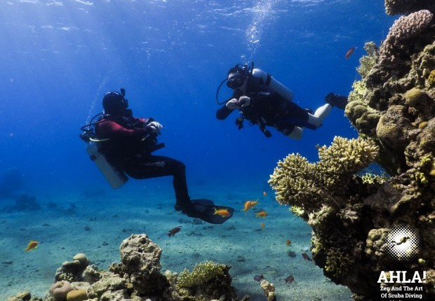 diving courses in eilat for beginners