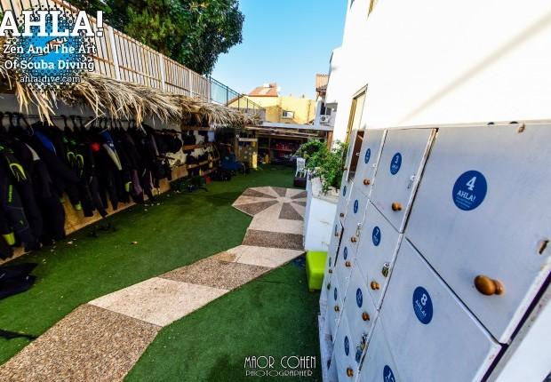 дайв-центр в Эйлате с проживанием_dive center in Eilat with accommodation_מרכז צלילה באילת עם לינה