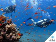 Secrets of saving air – secrets for beginner diver!
