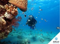 Diving – important safety measures
