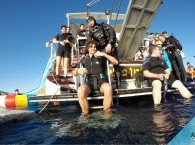 Diving – a popular water sport on the seacoast of Eilat