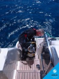Efficient means against seasickness