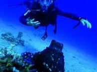 diving service_שירות צלילה באילת_лучший дайвинг в Эйлате