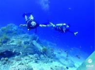 snorkel diving_צלילה שנורקל_плавание с маской и трубкой в Эйлате