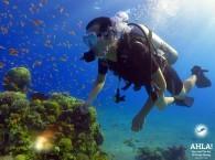 nitrox diving_найтрокс дайвинг_צלילת נייטרוקס