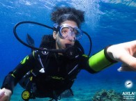 intro dive in good diving center eilat
