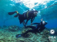 scuba diving courses for everyone in eilat israel