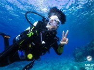 scuba diving for beginners in eilat red sea