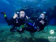 scuba diving in eilat for beginners