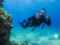 cheap diving holidays