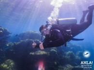 scuba diving holidays in red sea