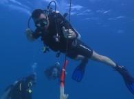 Buoyancy курс OPEN WATER