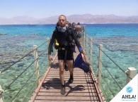 скуба дайвинг на Красном море