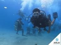 курс Open Water Diver в Эйлате