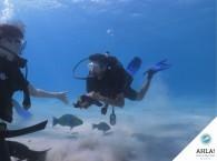 курс обучения дайвингу_course of learn diving   Используется в ссылках на фотографию, заголовках.