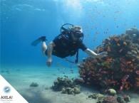 первые шаги в дайвинге_firsts steps in diving