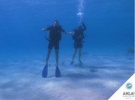 мир дайвинга_world of diving