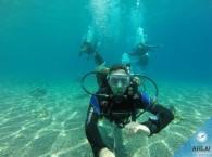 заключительный день погружений курса OW_final day of diving course Open Water Diver.jpg
