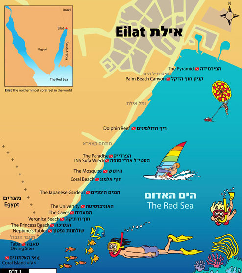 Dive sites of Eilat