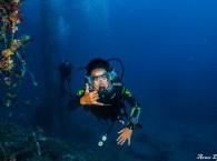 guided dive in eilat_צלילה מודרכת באילת_погружение с инструктором в Эйлате